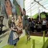 Цветочное шоу в Hampton Court