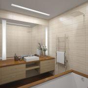 Проект двухкомнатной квартиры в Москве 57 кв. м.  Ванная комната и туалет