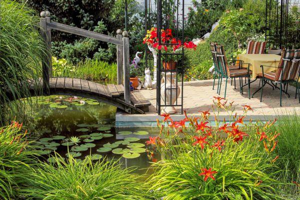 Создайте проект сада вашей мечты! Проект сада мечты за 1 год – это реально!