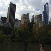 Стажировка в Нью-Йорке