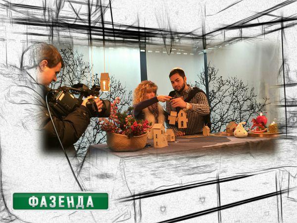 Проект декоратора Юлии Алексеевой в «Фазенде» на Первом канале