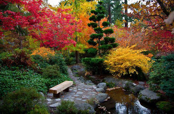 Двенадцать шагов к созданию прекрасного сада