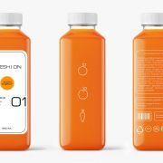 Проект Марии Мартьяновой «FRESH ON – Eco Juice»